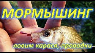 МОРМЫШИНГ, КАРАСЬ, ПРОВОДКИ