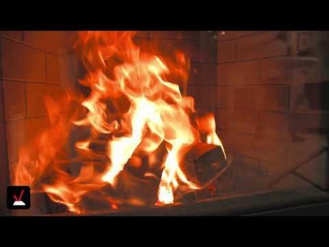 Brennholz | Hainbuche: Vor- Und Nachteile