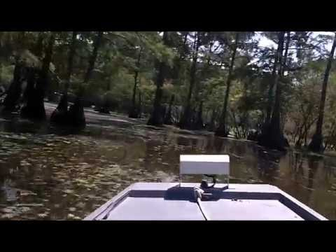 Paw-Paw Bayou on Cross Lake in Shreveport, Louisiana