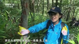 [远方的家]大好河山 大巴山——走进无人区  CCTV中文国际