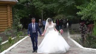 (СВАДЬБА В ДАГЕСТАНЕ)#дагестан#кавказ#клипы#хиты