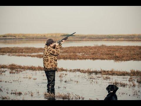 California Duck Hunting   Marshview Duck Club