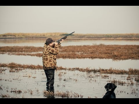 California Duck Hunting | Marshview Duck Club