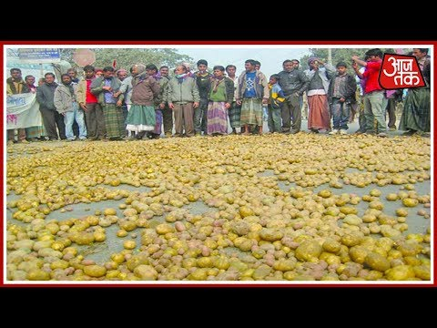 Khabrien Superfast: Potatoes Worth Crores Dumped Outside UP Assembly