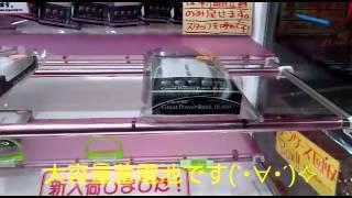 [大容量蓄電池]電子機器蓄電池( ´・ω・ ` )σ