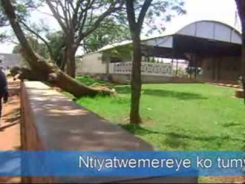 Gitega le centre du Burundi et L'Arbre du centre du Burundi