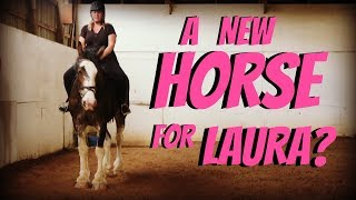a new horse for laura? day 150 053018