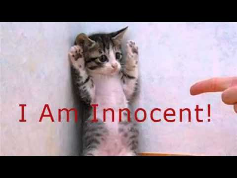 скачать игру I Am Innocent - фото 5