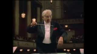 Mozart - Klarinettenkonzert - Wiener Philharmoniker - Bernstein - Schmidl (VHS)