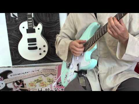 UGS -universal guitar support