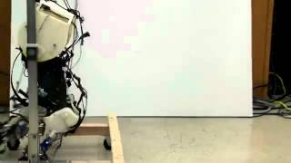 Accurate Robotic Legs Mimic Human Gait