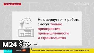 Кто может выйти на работу с 12 мая - Москва 24