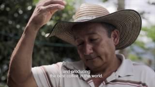Central de beneficio de café en Farallones - Colcafé - [realtape]