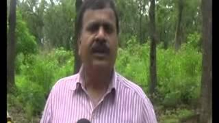 2 People among Wild Elephant in Achanakmar Wildlife Sanctuary Chhattisgarh