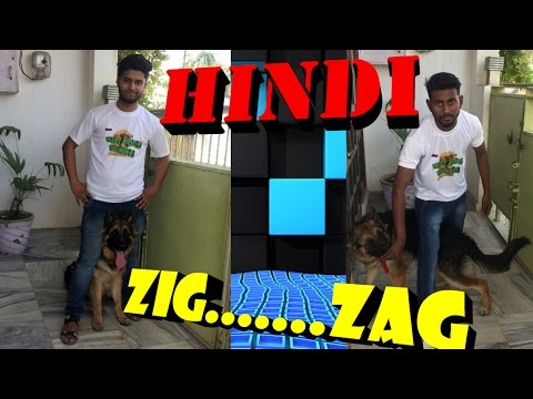 How To Teach Your Dog ZiG ZaG iN Hindi INDIA   || dog training in hindi ||