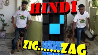 How To Teach Your Dog ZiG ZaG iN Hindi INDIA   || dog training in hindi ||