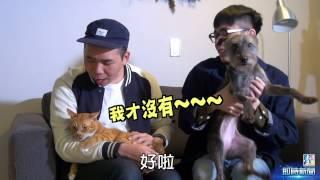 【台灣壹週刊】貓狗的拈花吃草小日子 thumbnail