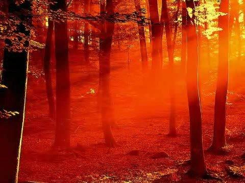 Peter Gabriel  Into the Sun