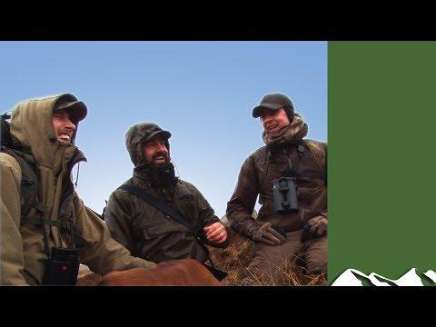 Irish Sika Stalk In The Wicklow Mountains