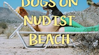 NATURIST BEACH With DOGS, CROATIA (zabieramy Psy Na Plażę FKK W Chorwacji)!