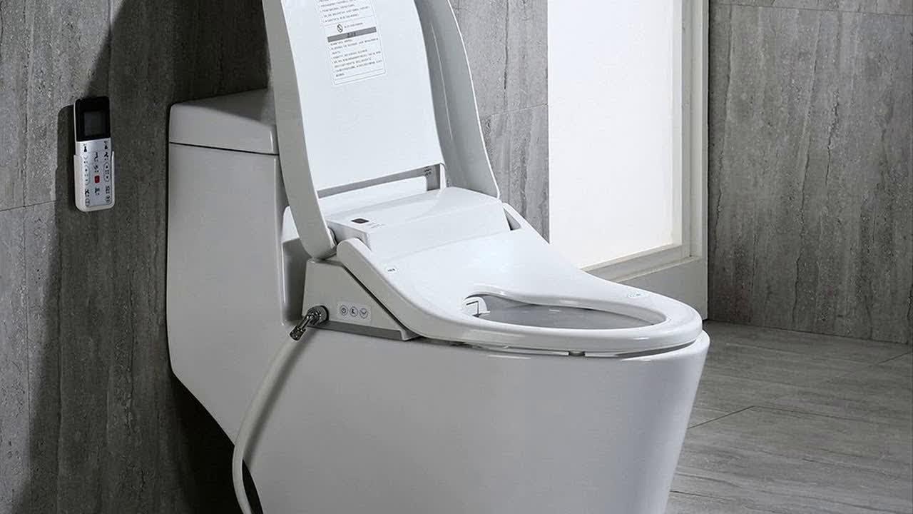 The 5 Best Bidet Toilet Combos Reviews Rankings