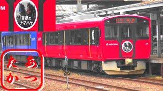 【非電化区間を走るナマハゲHM電車 EV-E801系】秋田駅にて