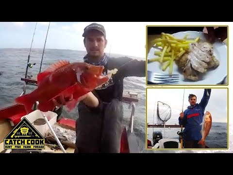 Monster Silverfish & Red Roman [CATCH COOK] Steamed Fish & Chips, Kleinbaai, South Africa
