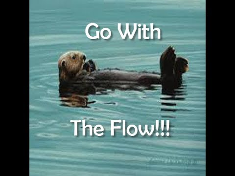 You can go upstream or with the flow. DON'T fight your FEELINGS.