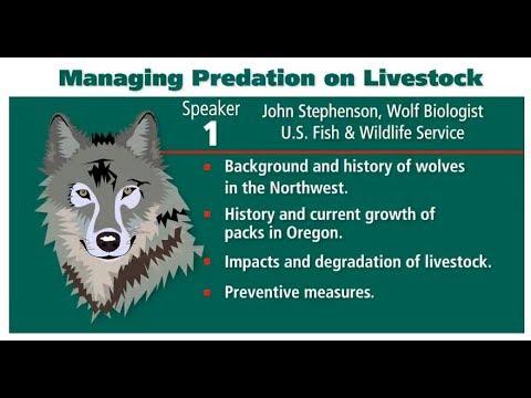 Managing Predation on Livestock - John Stephenson