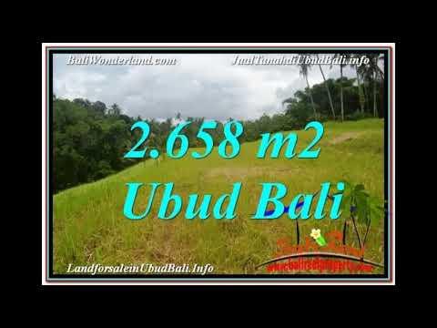 Affordable 2,658 m2 LAND SALE IN Sentral / Ubud Center BALI TJUB641