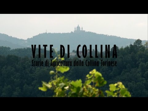 Life in the Hills / Stories of Agriculture from the hills of Turin -