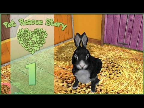 Pet Rescue Story || First Day at the Rescue! - Episode #1