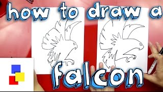 How To Draw A Falcon