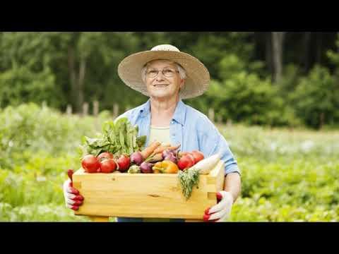 Германия: Штраф 25 000 евро, за выращивание овощей в огороде!!!