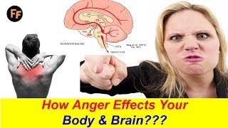 How Anger Effects Your Body & Brain ??? Control Your Anger by these Techniques - How to Avoid Anger?