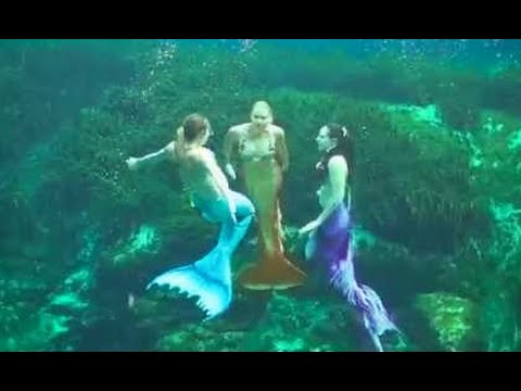 Mermaid Job Training & Rehearsal: Mermaid Melissa with Real Life Mermaids