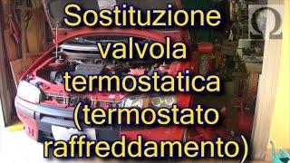 Tutorial sostituzione valvola termostatica auto Fiat Punto 188 fire