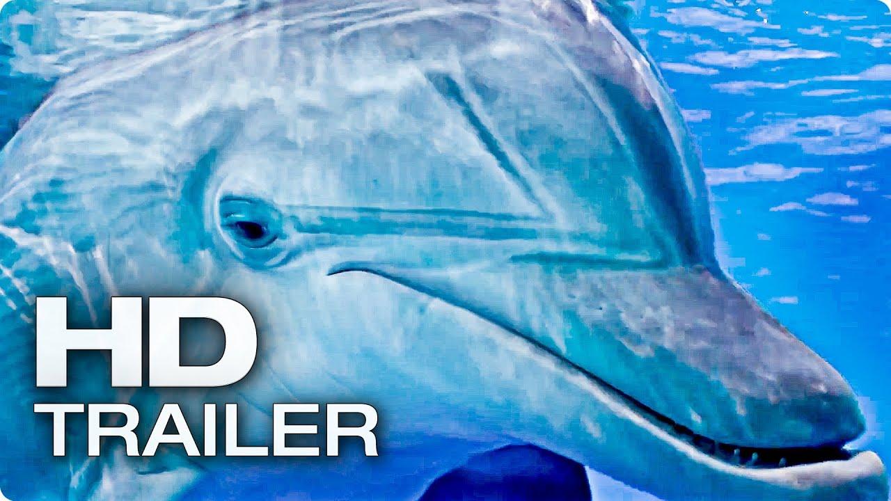 Mein Freund Der Delfin Ganzer Film