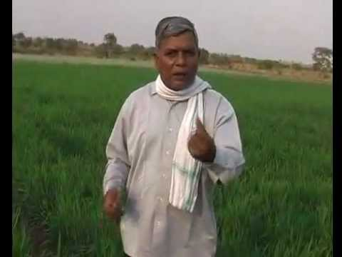 Subhash Sharma Ji on Organic Farming Part 1