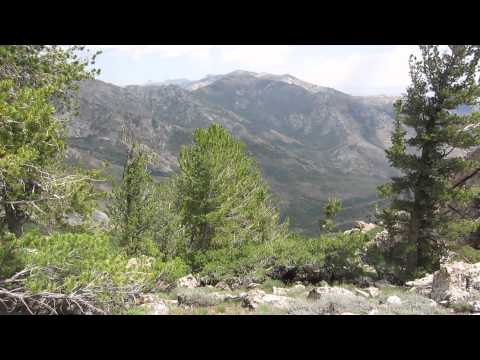 Ruby Crest Trail: Campsite at Overland Lake