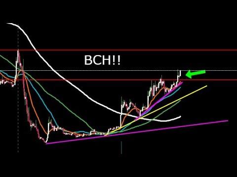 BITCOIN CASH/ BITCOIN UPDATE!!  MY TARGETS!