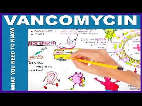 VANCOMYCIN - What You Need to Know