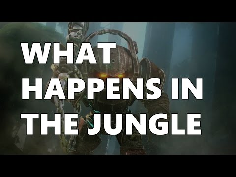 WHAT HAPPENS IN THE JUNGLE...