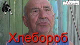 Хлебороб .  Кинель-Черкасский район, с. Лозовка