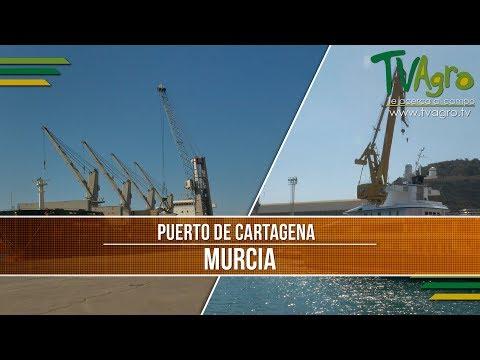 Como Funciona El Puerto De Cartagena En Murcia España- TvAgro Por Juan Gonzalo Angel