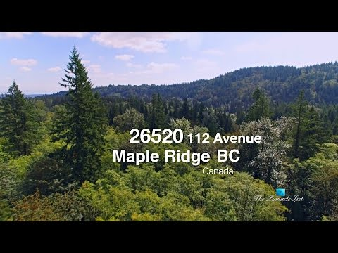 26520 112th Ave, Maple Ridge, BC, Canada 🇨🇦 | Rural Real Estate