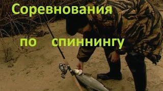 Рыбалка с поплавочной удочкой | Успешная рыбалка