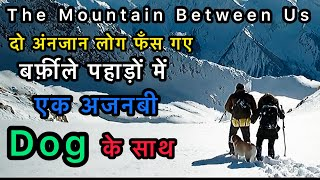 THE MOUNTAIN BETWEEN US EXPLAINED IN HINDI / LOVE AND  SURVIVAL STORY