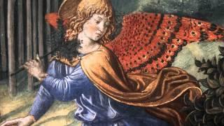 """J. S. Bach - Cantata: """"Geist und Seele wird verwirret""""- BWV 35 - Leusink"""