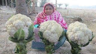 Farm Fresh Cauliflower Masala Curry Vegetarian Dish Recipe Gobi Masala Easy Tomato Gobhi Masala